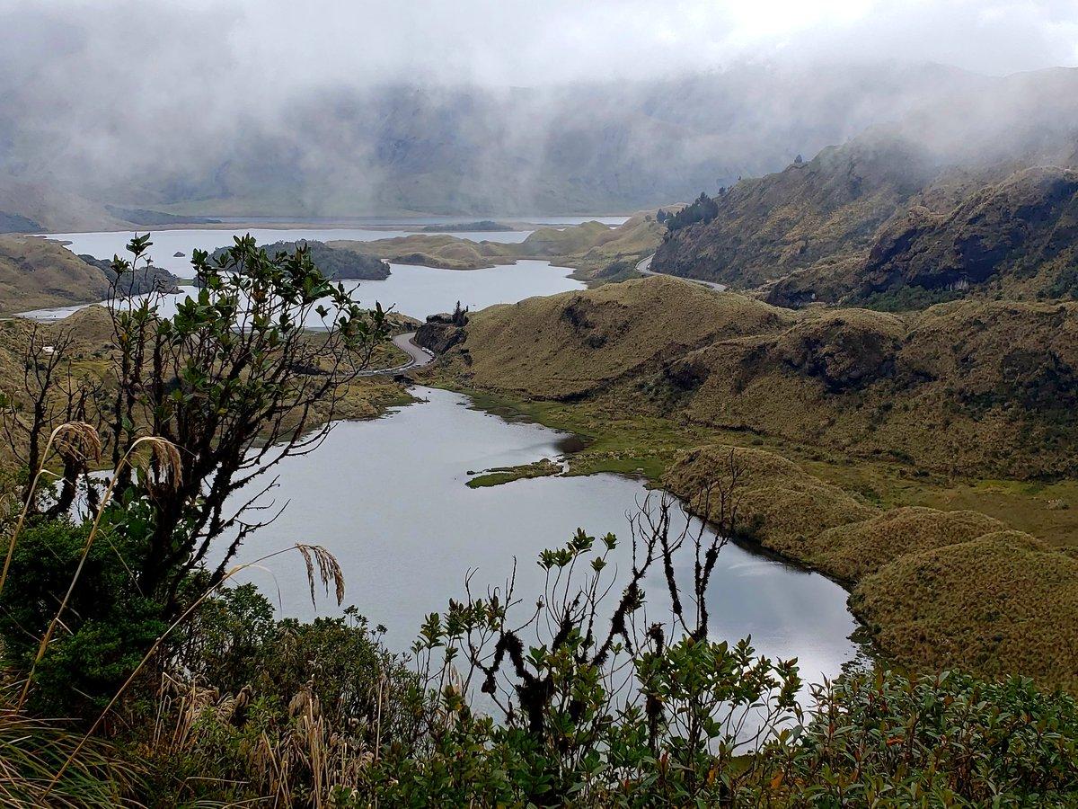 Gober Chimborazo