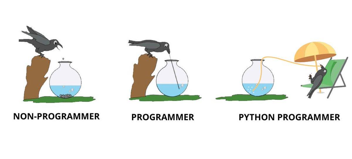 Good Python Developer 1