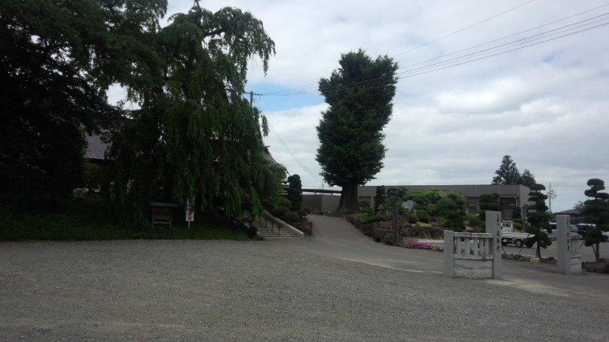 浦和11R単勝②⑩当たりますように。写真は7月10日 同寮の葬儀場お寺