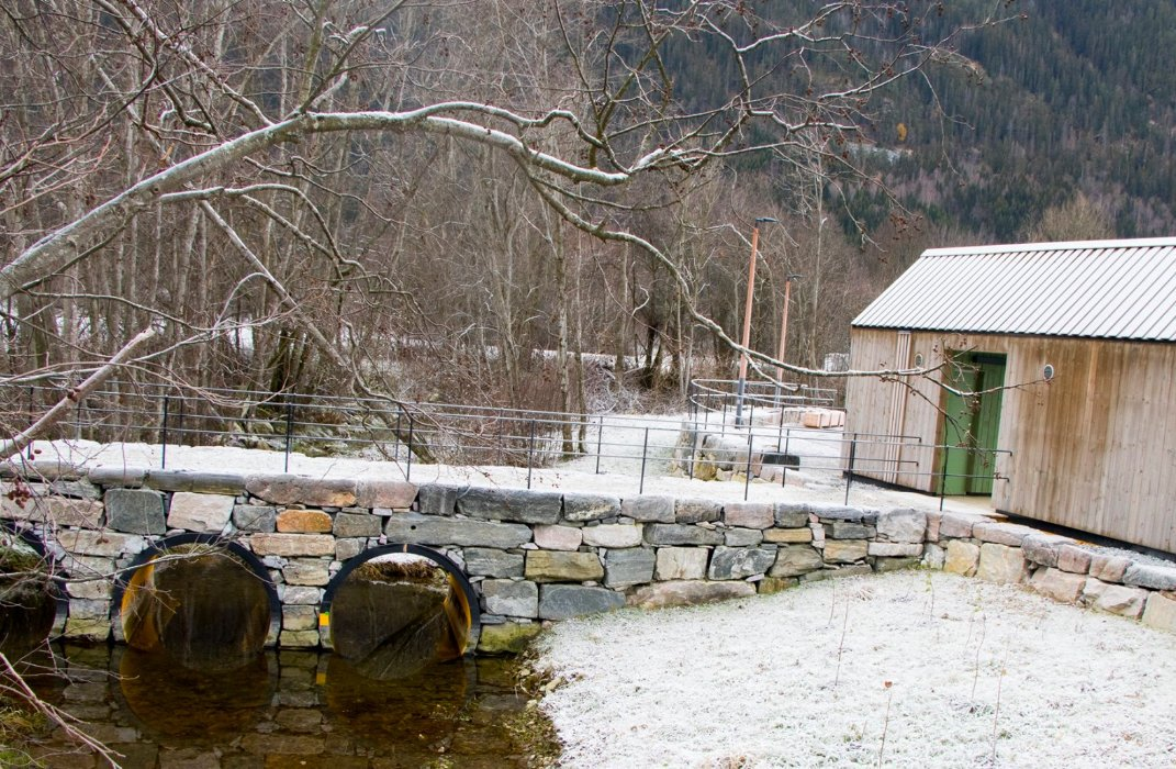 Hjartdal Singel Treff : Enslig i nærøysund : Rutebygg