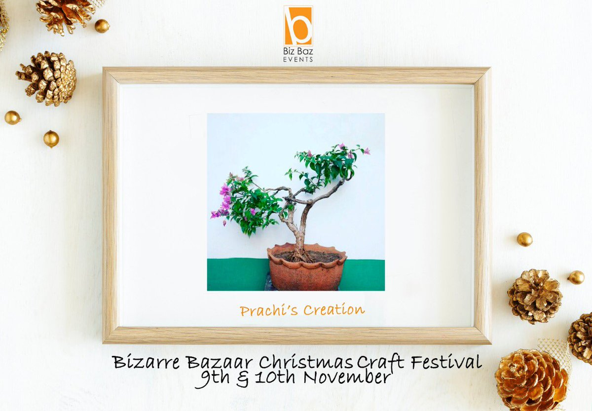 Biz Baz Events On Twitter It S A Bonsai Party A Bonsai Tree Is The Perfect Gift To Let That Special Person Know How Important They Are To You It Symbolises Harmony Peace