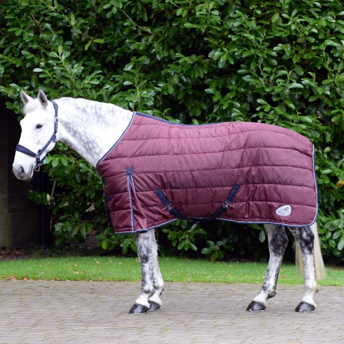 Fancy a free rug? Head to Your Horse Live this weekend...  To find out how you get your mitts on this freebie rug, get your medium trot on and head over to see the @HarryHallRiding team. https://t.co/zCKjuDWA4Z