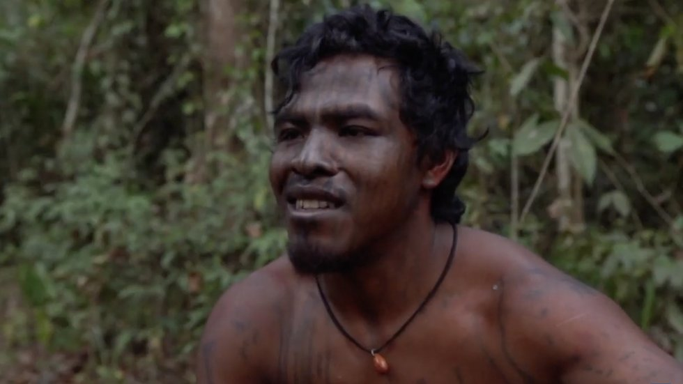 Another one! @thehill: #Indigenous leader killed by illegal #loggers in #Amazon hill.cm/E0MqivP #rainforest