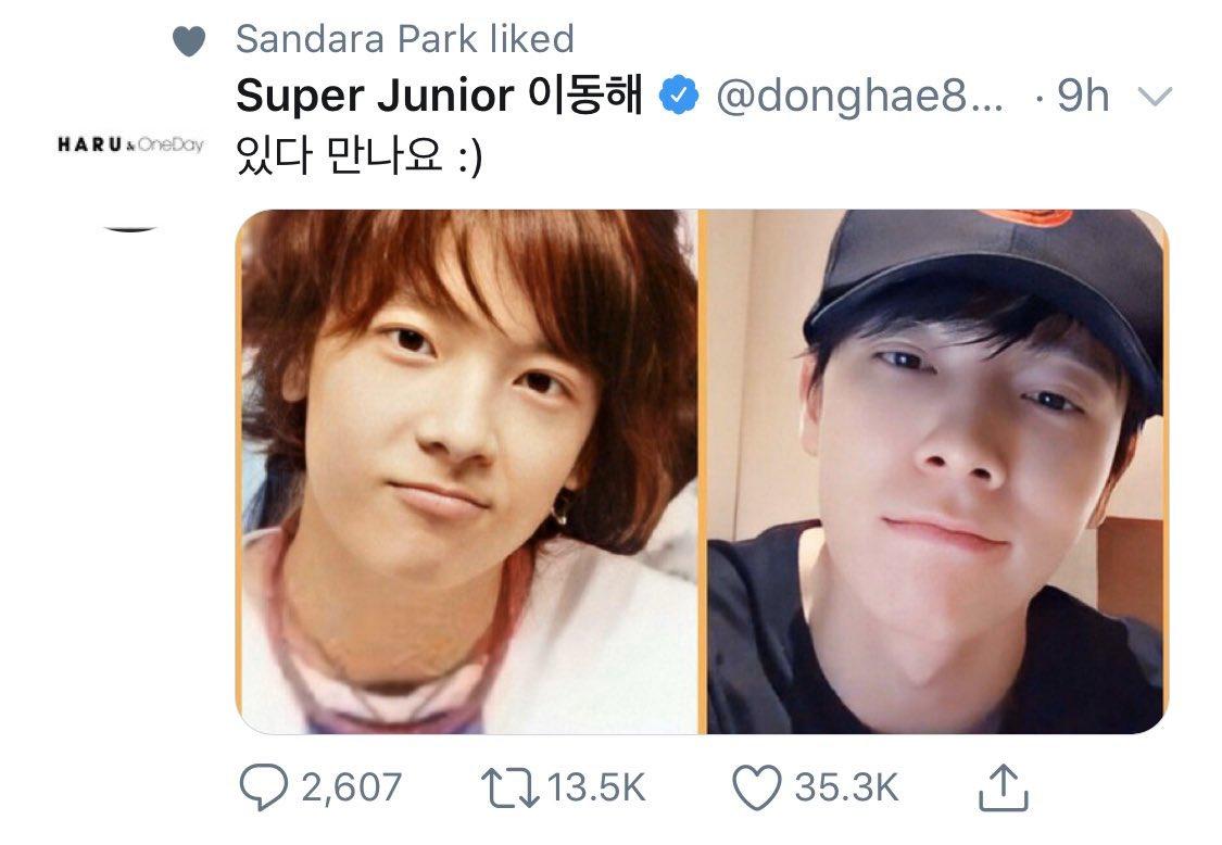 Lee Donghae och Dara dating