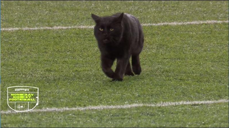 Ryan Kryska On Twitter Daniel Cat Jones The Star Of Monday Night Football In New York