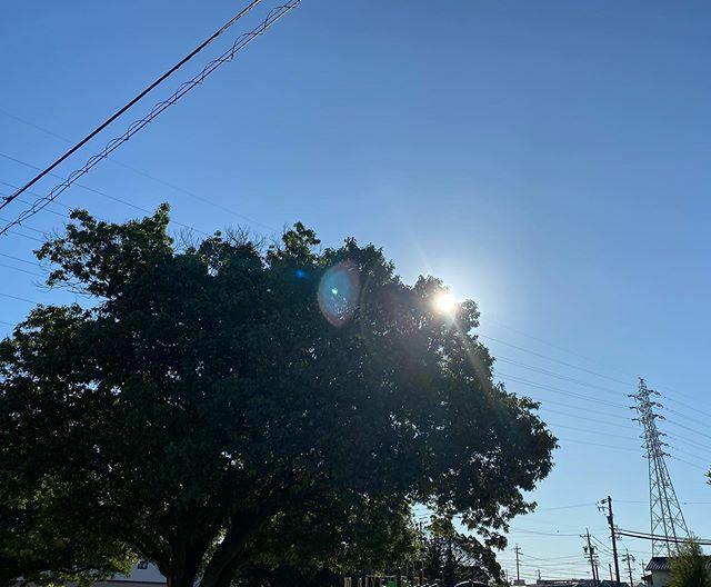 朝は寒かったけど #今日もいい天気 〜 . #太陽 #sun #イマソラ #いまそら #ノンフィルター #ノーフィルター #青空 #あおぞら #bluesky #空 #そら #sky #電線 #electricwire #electricwires #鉄塔 #steeltower #pylon