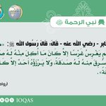 Image for the Tweet beginning: عن جَابرٍ - رضي الله