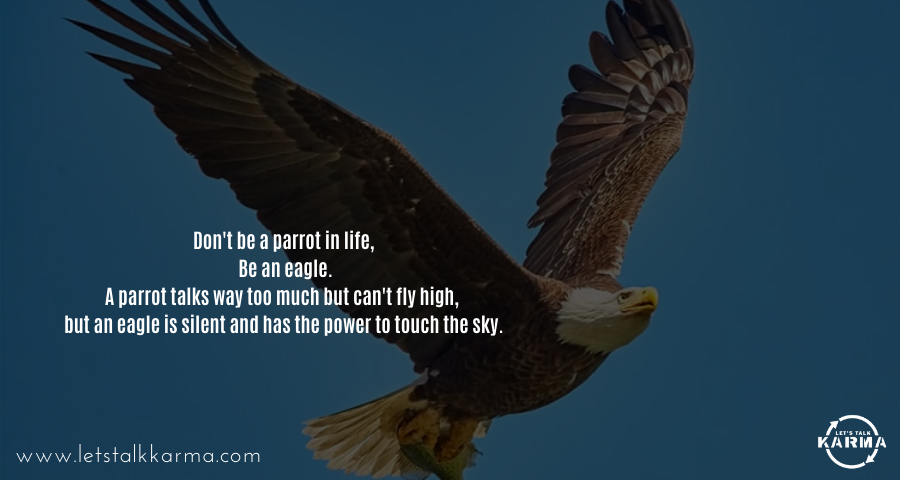 Don't be a parrot in life, Be an eagle. A parrot talks way too much but can't fly high, but an eagle is silent and has the power to touch the sky. #successfulminds #liveyourtruth #leadership #dreambigger #entrepreneurspirit #garyvee #grantcardone<br>http://pic.twitter.com/DlFksIC6cb