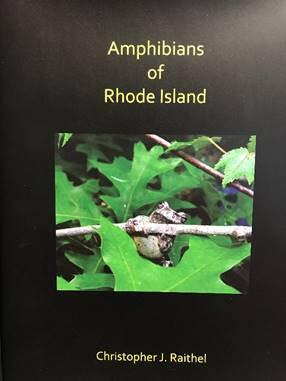 Cover of Amphibians of Rhode Island, Chris Raithel's new book. / Credit: Christopher Raithel
