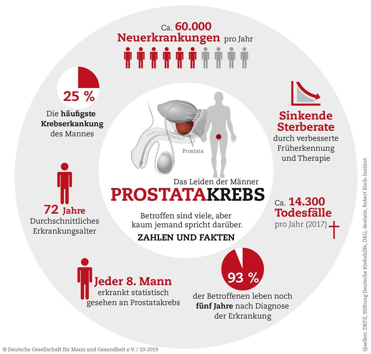 prostata informationen