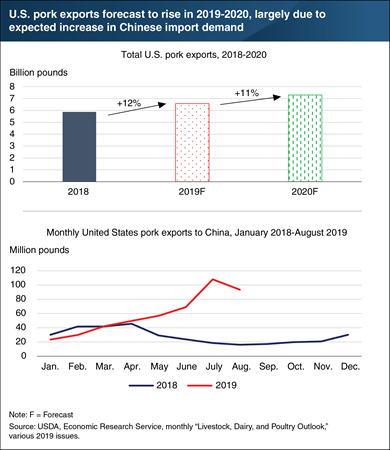 U.S. pork exports are forecast to rise in 2019 to 2020, largely due to an expected increase in Chinese import demand.
