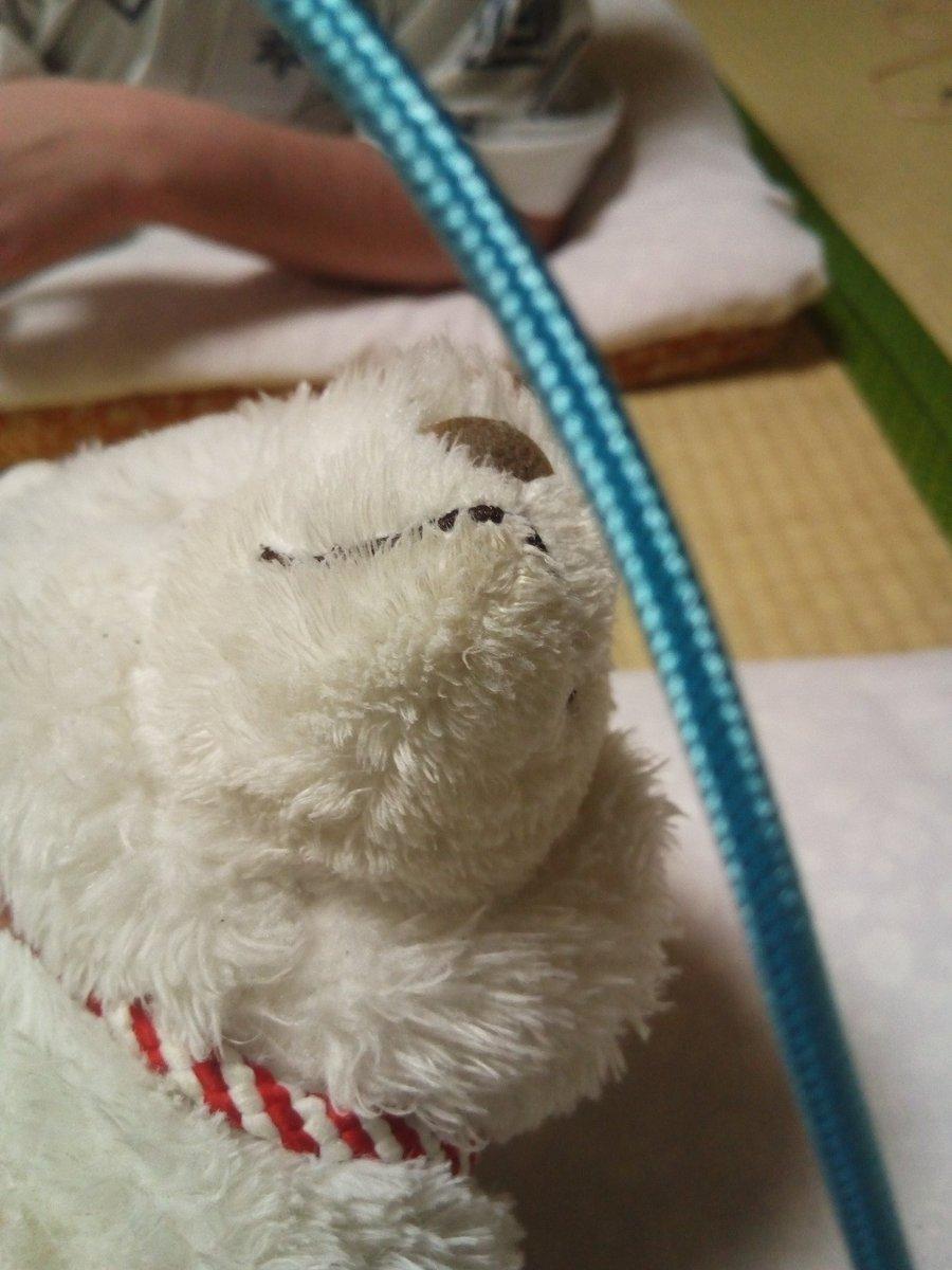 test ツイッターメディア - 温泉入って来ましたー 少し熱めでした。  きょうはそろそろ寝ますー ひざきつね、函館で一泊。 https://t.co/W4NFCaT11B