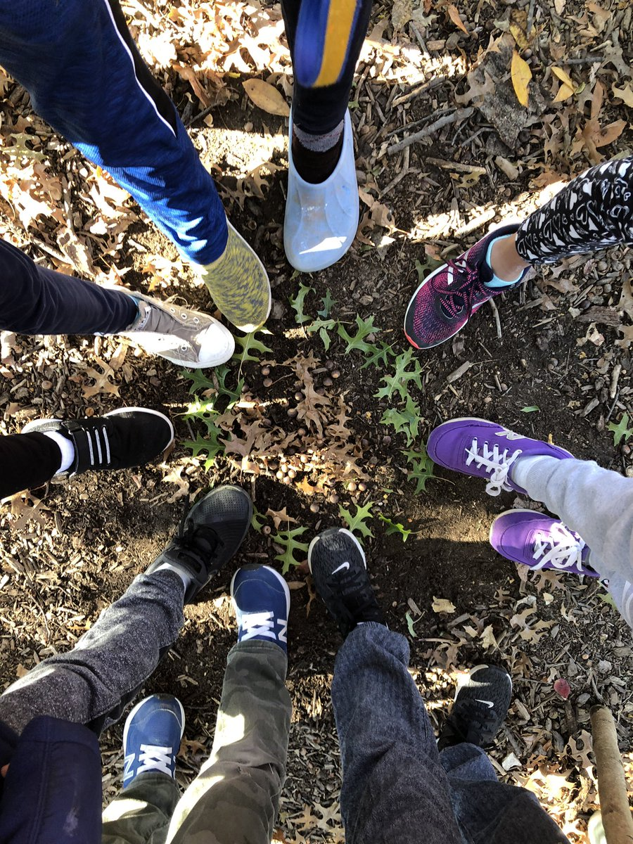 Teamwork is dream work- students put there best foot forward making radial designs with nature- <a target='_blank' href='http://twitter.com/CIS_APS'>@CIS_APS</a> <a target='_blank' href='http://twitter.com/Principal_CIS'>@Principal_CIS</a> <a target='_blank' href='http://twitter.com/APSArts'>@APSArts</a> <a target='_blank' href='http://twitter.com/APSVirginia'>@APSVirginia</a> <a target='_blank' href='https://t.co/6YLsWU0bSF'>https://t.co/6YLsWU0bSF</a>