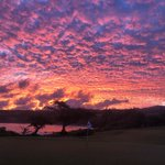 Image for the Tweet beginning: How about today's Maui sunrise?