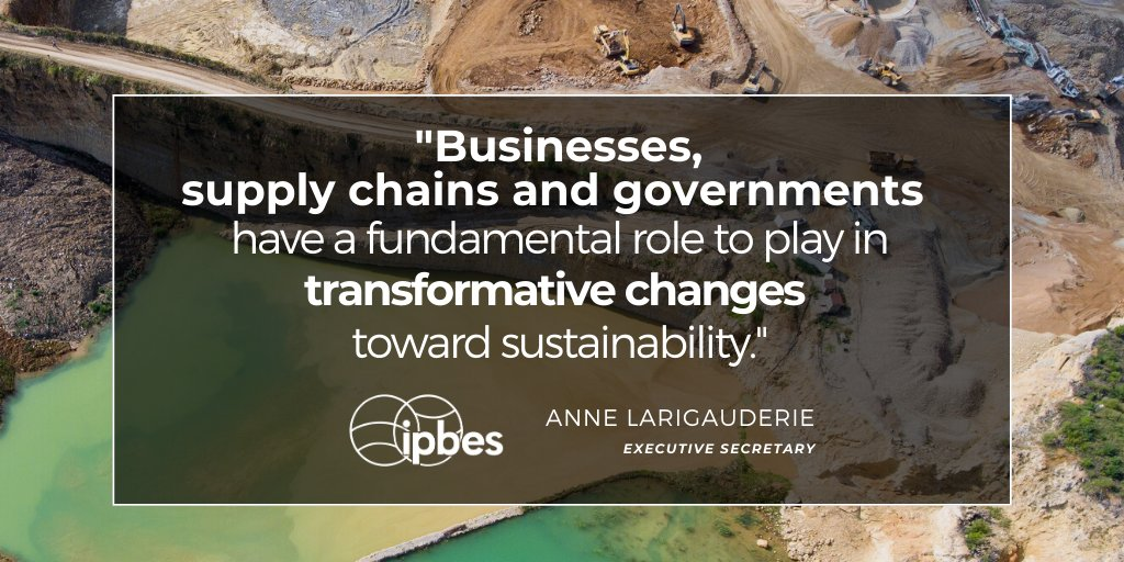 #Business commitments and innovations such as #sustainable sourcing and resource efficiency, underpinned by #ClimateSmart policies can transform #economies to stop #biodiversity loss put us on a more sustainable trajectory. #BusinessNatureSummit Live: youtube.com/watch?v=ho5IdH…