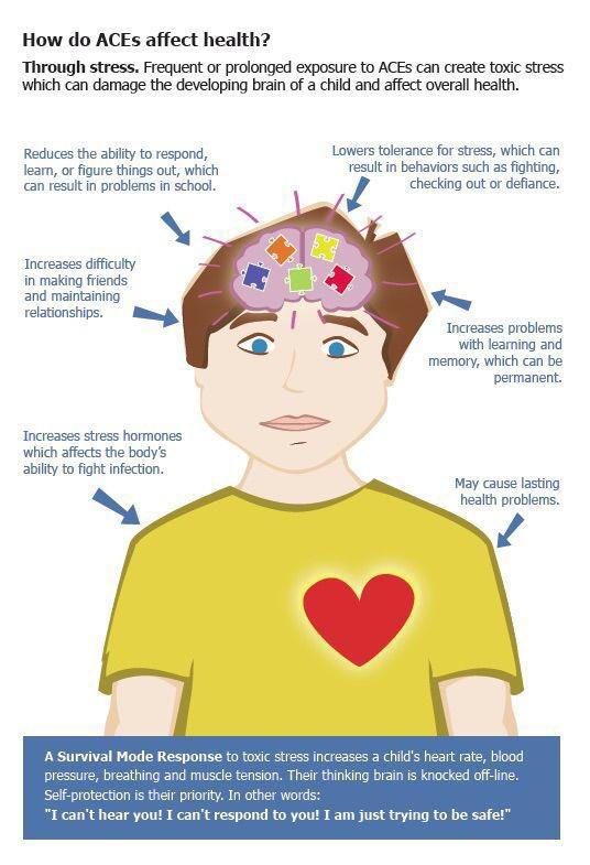 How do ACEs affect health? #trauma #traumainformed #mentalhealth