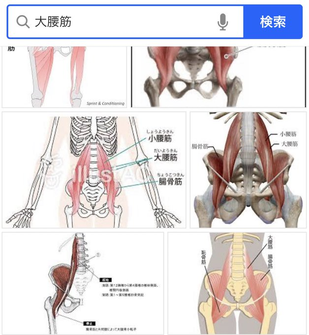靭帯 鼠径 鼠径靭帯の炎症