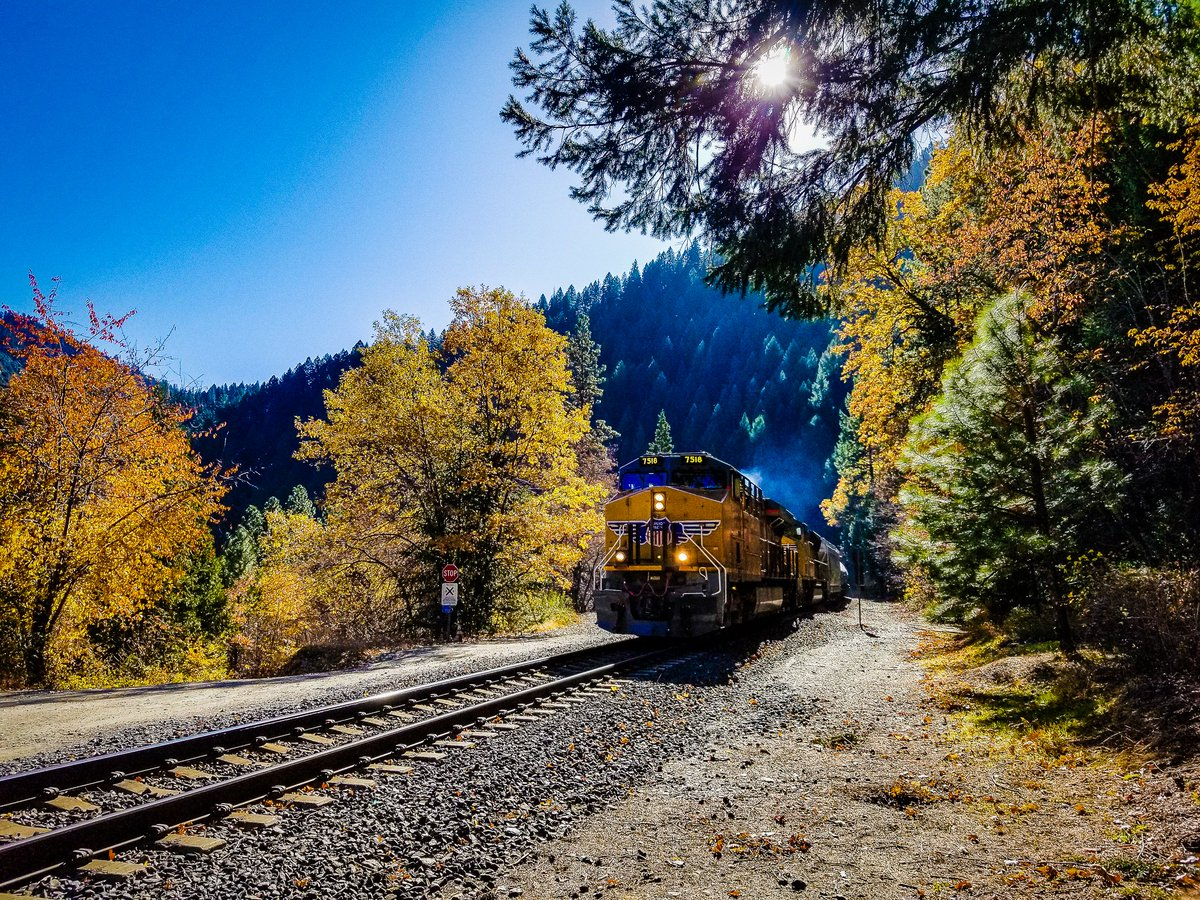 #Trains spotting and #fallcolors spotting are favorite activities at Rich Bar on the Feather River in the @ShastaCascade. See more at http://CaliforniaFallColor.com  #NikonFallCA #autumn #fall #autumnleaves #Autumnwatch #Autumn_Dream #autumnvibes #autumnmood #fallfoliage @VisitCApic.twitter.com/8JKYvW3OzI