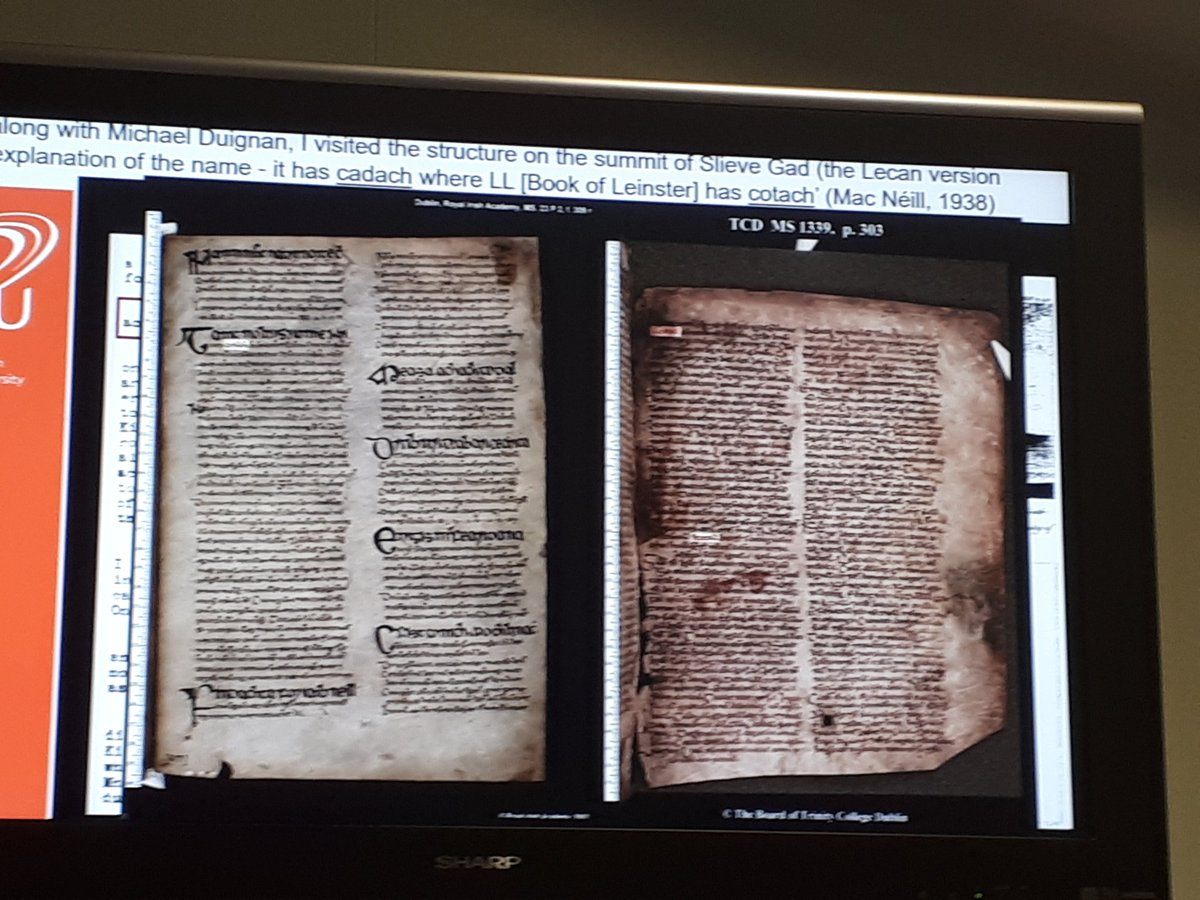 test Twitter Media - Great to see images from @DIAS_ISOS being mentioned by Victoria Smyth @DCULIB at #LAIRBG19 @CBL_Dublin #DIASdiscovers https://t.co/v3pR9wuaiQ