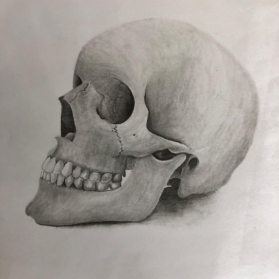 Check out some of the Anatomy Value Studies that our HSA Art students created! @BHSMarlins @artkat70 🎨🖼