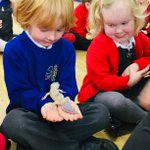 Image for the Tweet beginning: Reception have had a great