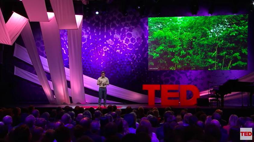 How to grow a 100-year-old forest in just 10 years?   Watch entrepreneur and @TEDTalks speaker @shubzsharma explain:  https://t.co/Km5Wx5Esk7