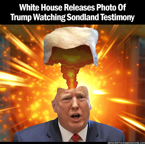 White House releases photo of Trump watching Sondland testimony