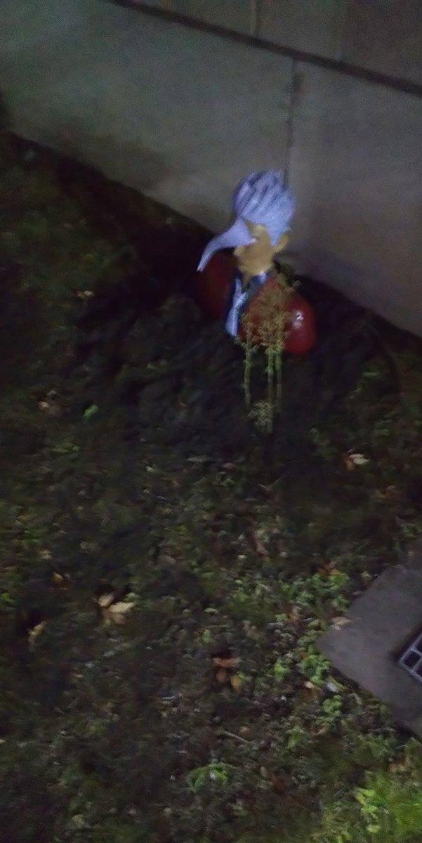 明日から11月祭が始まる京都大学ですが、歩いてたらオルガ団長が埋まってました。