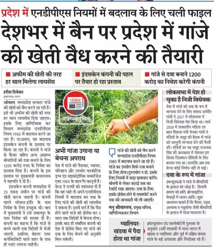 कांग्रेस सरकार मध्यप्रदेश को नशाखोरी के दलदल में धकेलने के सभी प्रयास कर रही है। पहले शराब दुकानों के साथ अहाते खोलने का विनाशकारी फैसला लिया उसके बाद अब मध्यप्रदेश में एनडीपीएस नियमों में बदलाव कर गांजे की खेती को वैध करने की तैयारी की जा रही है। #MP_मांगे_जवाब