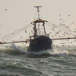Image for the Tweet beginning: #NoordZee #visserij #kust  Het is