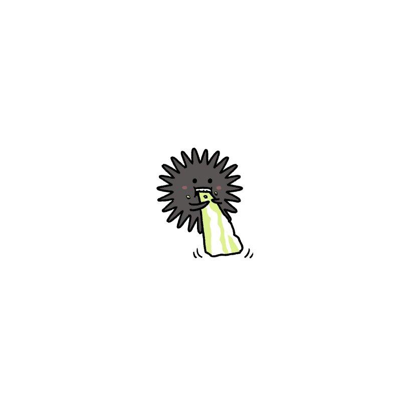 キャベツを食べるウニかわいい