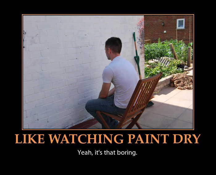 @CaptainLives Im going to miss out on watching the impeachment debacle. I have MORE important things to do which is to watch paint dry on a wall.