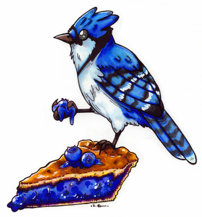 I have a craving for blueberry pie now. <3#birbs#birby#bluejaybird#birds#blueberrypie#blueberries#pie#traditionalart