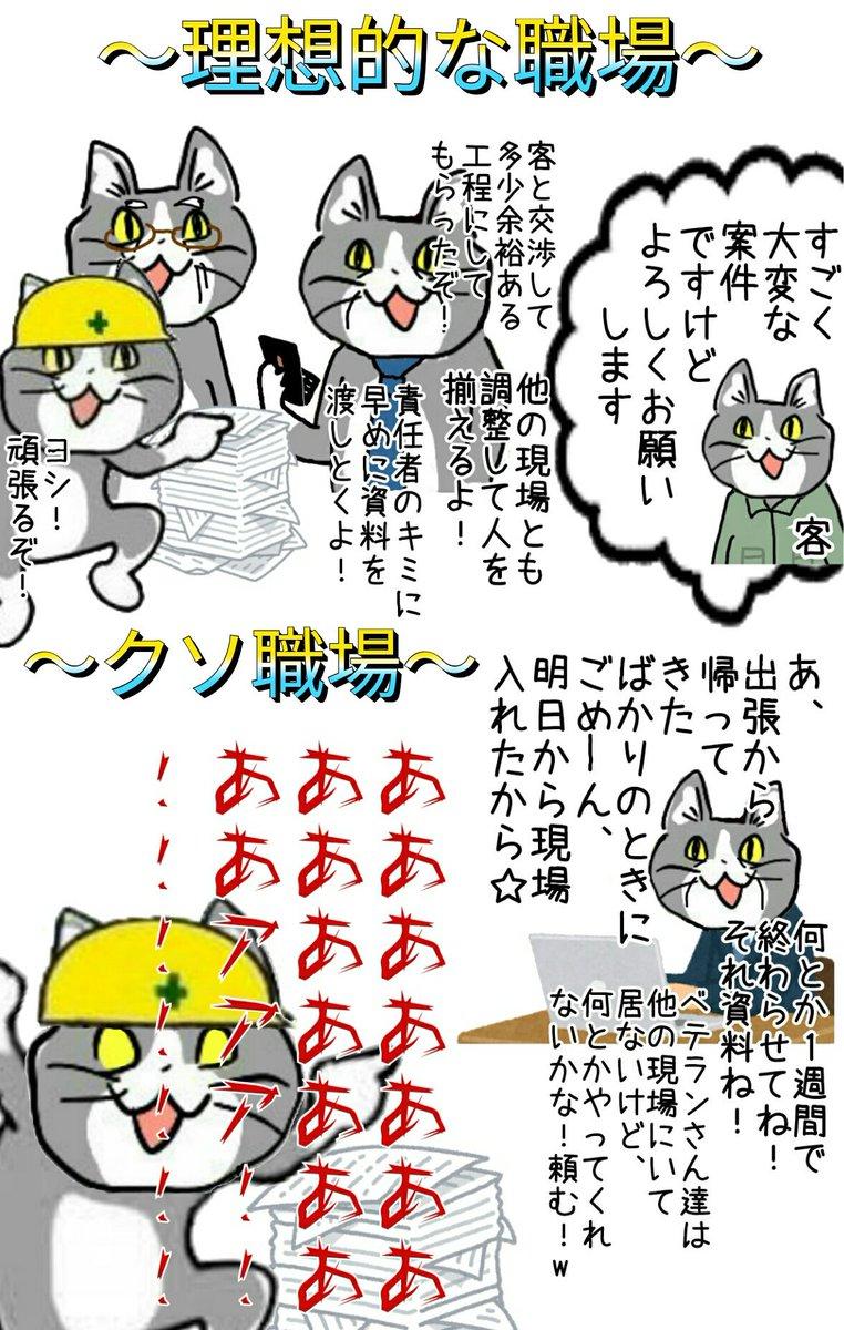 ハッシュタグ 現場猫