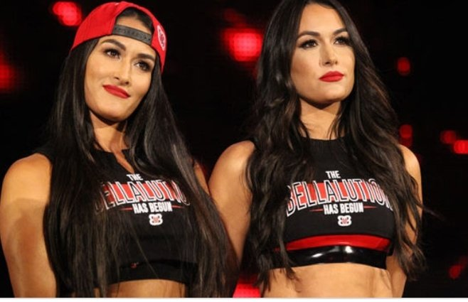 Happy Birthday To My Favorite Womens Wrestlers Brie Bella & Nikki Bella