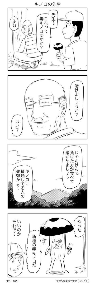キノコの先生
