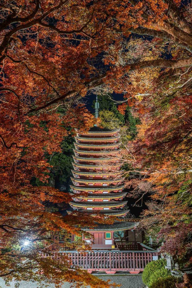 赤に包まれる十三重塔。凄まじい赤の世界でした。奈良県、談山神社にて。いよいよ今年もクライマックス!!