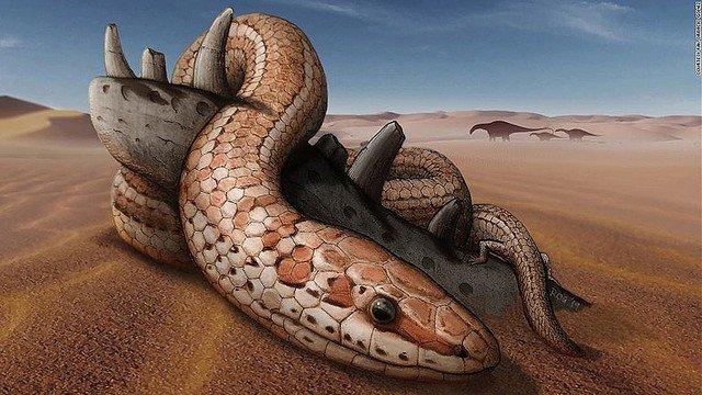 【マジか】初期のヘビ、7千万年にわたり「足」があったと判明化石を分析した結果、後ろ足があったことが判明。7000万年の間、後ろ足を備えた体形で安定的に生息していたという。