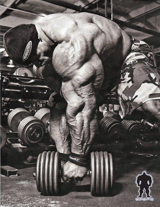 Amazing triceps of Branch Warren #branchwarren  #triceps  #dumbell  #bodybuilding  #bodybuilder  #hardcorebodybuilding  #hardcore  #champion  #champ  #ifbb  #monster  #massmonster  #massive  #muscular  #gym  #stage  #mrolympia  #olympia  #workout  #training  #diet  #fitness  #muscle  #muscles  #flex