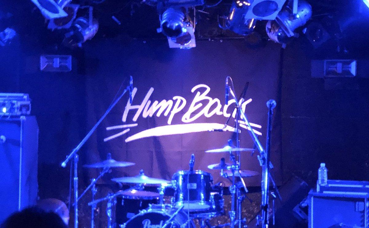 ハンプ バック ライブ