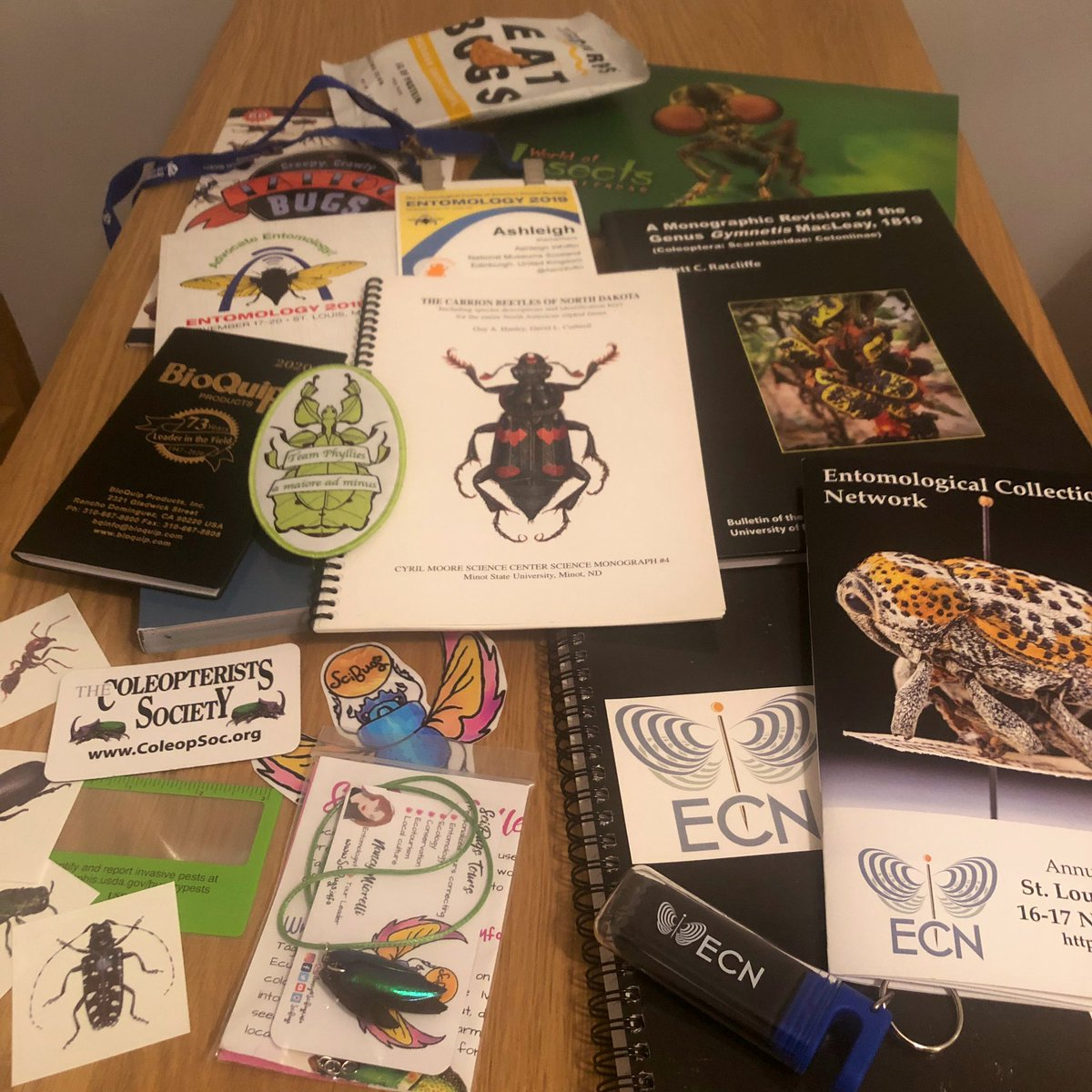 Pretty happy with all the goodies that I picked up (or was gifted) at #ECN2019 & #EntSoc19 ... #TeamBeetle #ConferenceSwag #Entomology<br>http://pic.twitter.com/TK7zTlcUq5
