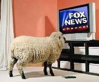 Replying to @ablnk: #FoxNewsIsUnAmerican