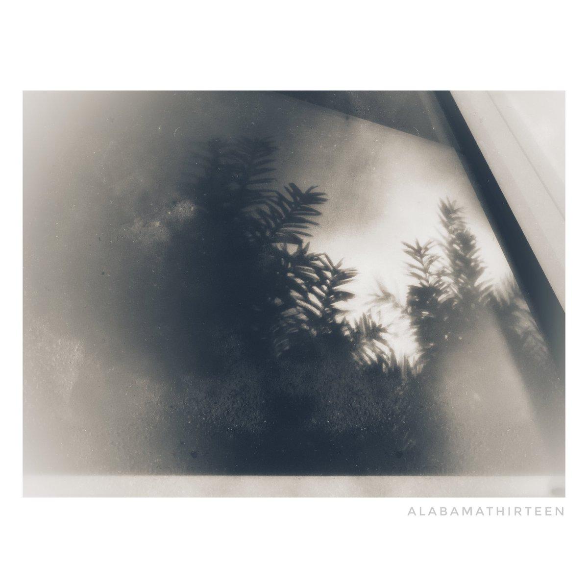 Hospital Beds | 091119 ___ #hospital #theviewfrommyhospitalbed #blackandwhitephotography #throughthewindow #shadows #bnw #monochrome #sickgirlsclub #fineartphotography #noir_shotspic.twitter.com/qJiqAr7HX1