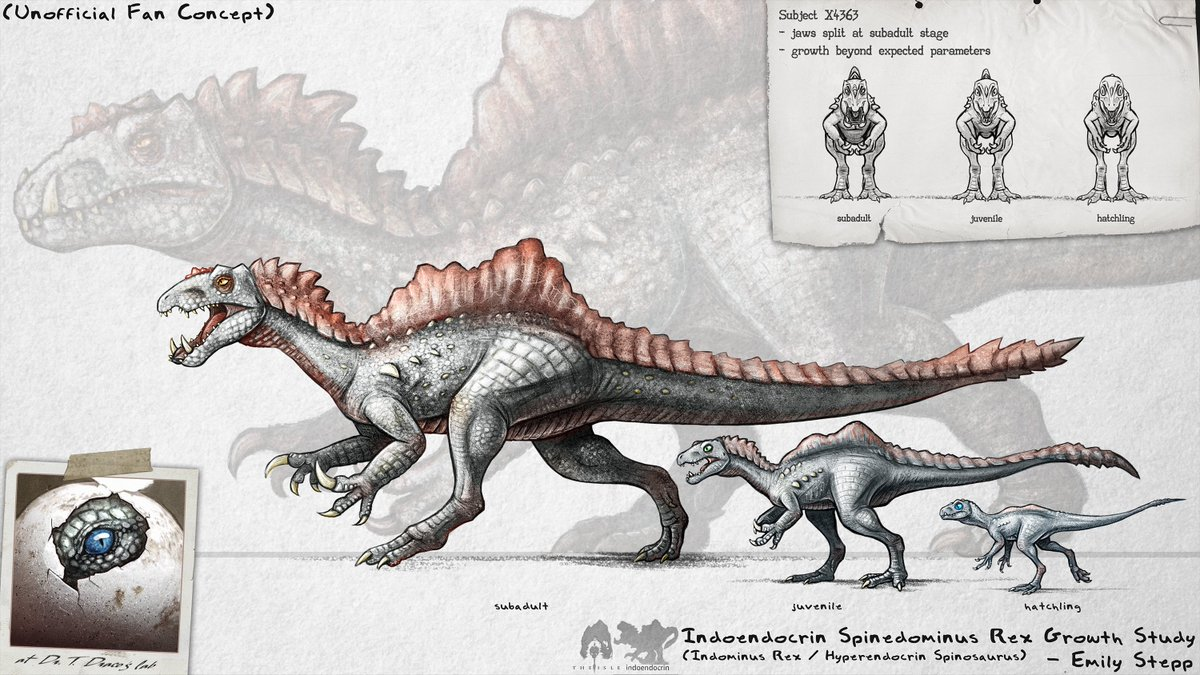 Ontogeny concept for @thDoctorTHE11th's modded creature for The Isle. #FanArt #GameArt #TheIsle #JurassicWorld #Art #CrossoverArt #DinosaurHybrid #GameMod #HyperendocrinSpinosaurus #IndominusRex