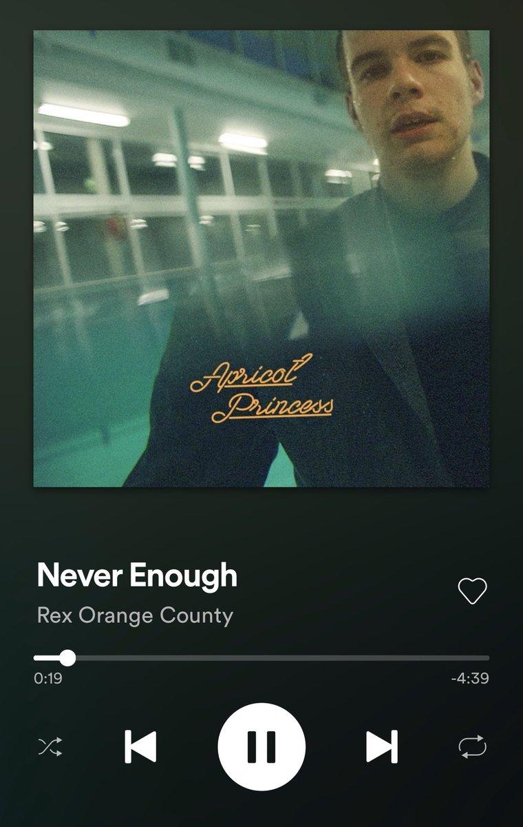 rex orange county (@rexorangecounty) on Twitter photo 2019-11-10 23:12:26