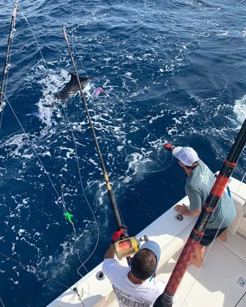 Cabo, MX - Capt. Ryan Donovan on 19's Toy went 3-3 on Blue Marlin.