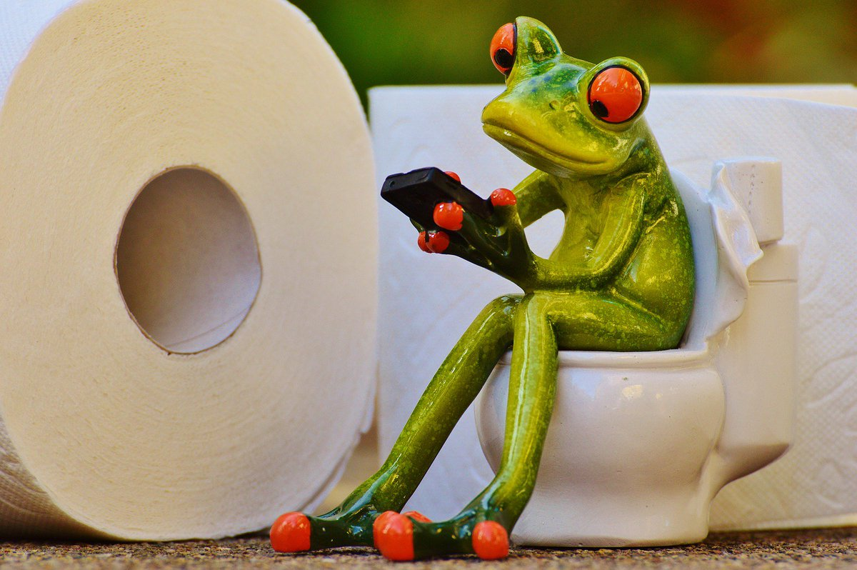 Let's talk about constipation so you can stay in motion. tiny.cc/48q2fz Photo: Pixabay