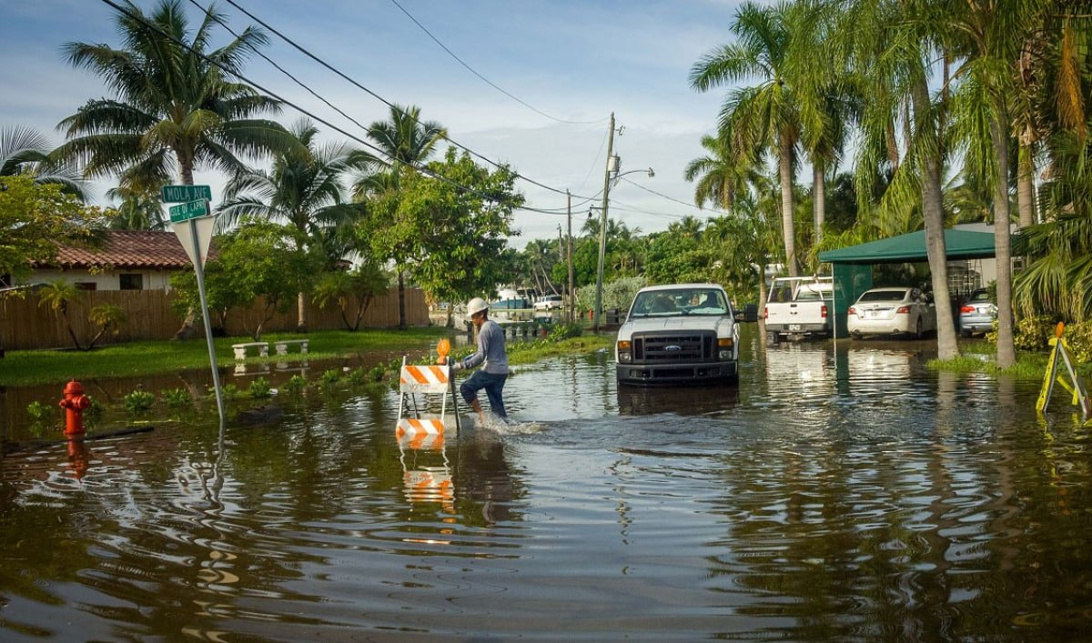 @JoseJavierJJR, Daniella Levine Cava (@VoteDaniella) to host climate change town hall via @realRyanNicol http://bit.ly/2q2iaIn #FlaPol