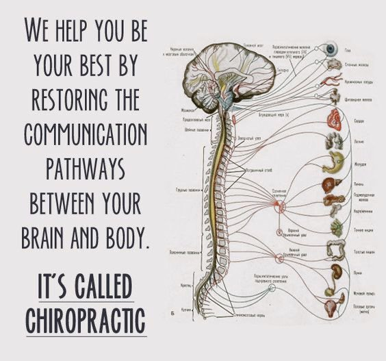 We are open today! Give us a call 630-907-1300 Advanced Relief Chiropractic of Aurora IL #advancedreliefchiropractic  #chiropracticadjustment  #aurorail  #auroraillinois  #auroraill  #chiropractor  #chiropractic  #chiro  #chiropracticworks  #chiropracticcare  #wellness