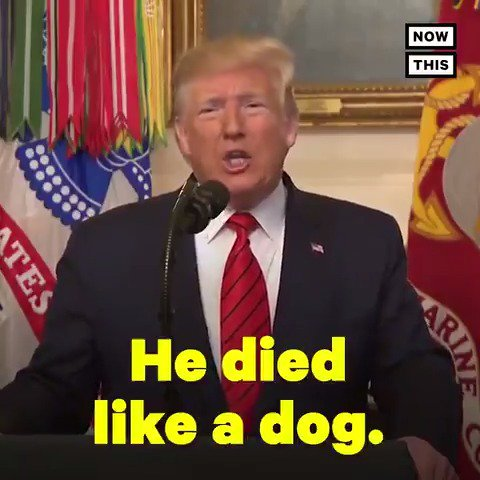 Watch all the times Trump has said someone or something is 'like a dog'